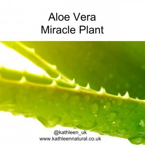 Cold Processed Aloe Vera Preserved Active Components